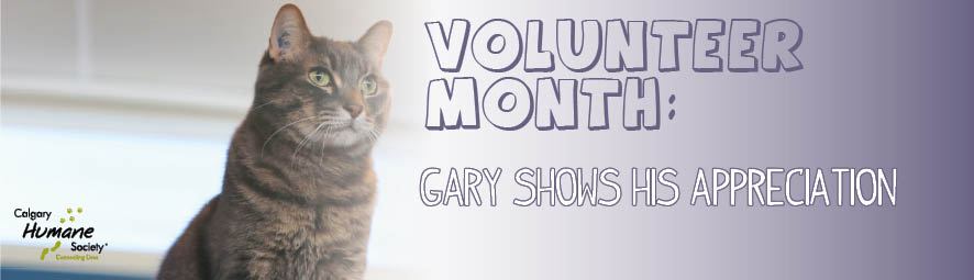 Volunteer Month Gary-72