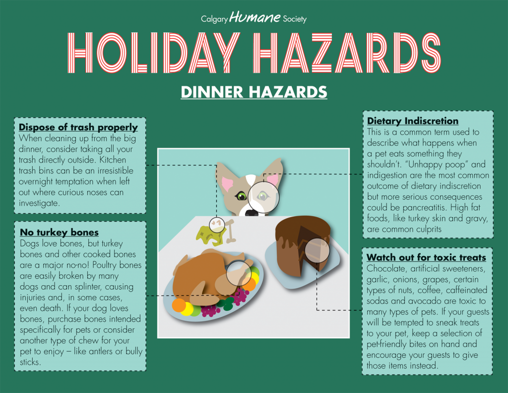 Holiday Hazards - Dinner