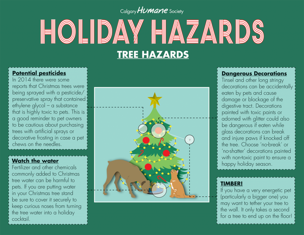 Holiday Hazards - Tree