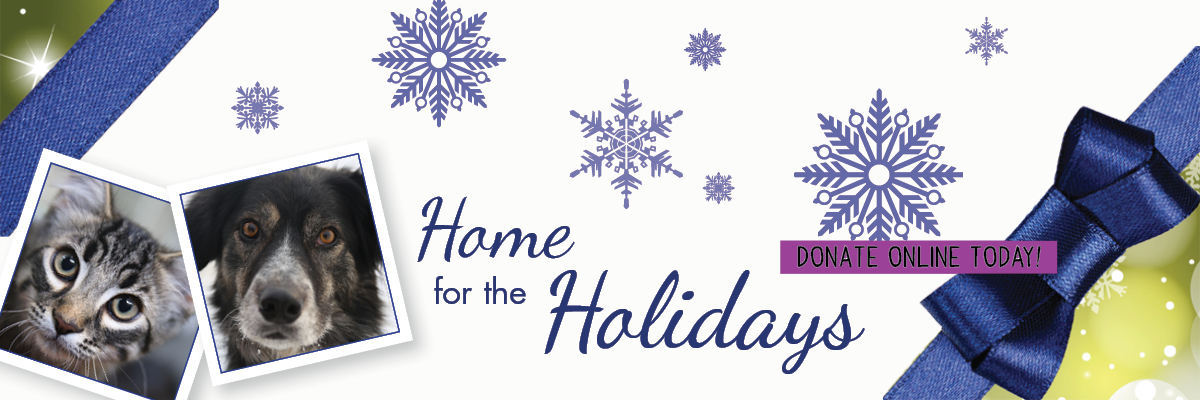 home-for-the-holidays-banner-final-donate
